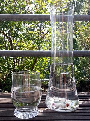 Glaskaraffe mit EM-Edelstein Energie Ring